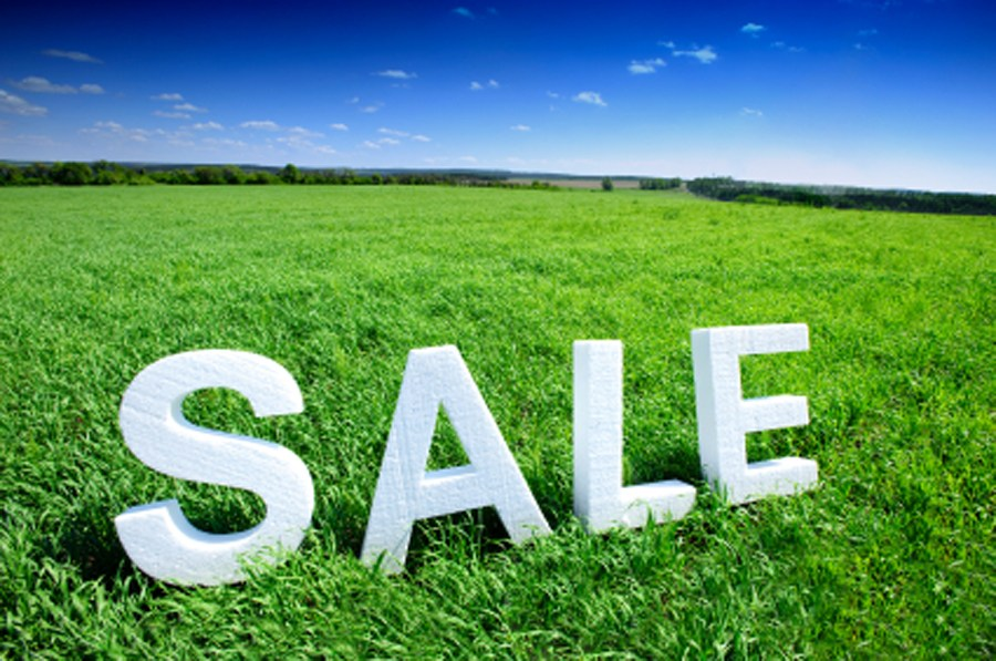 FIVE AFFORDABLE PLACES TO OWN LAND.